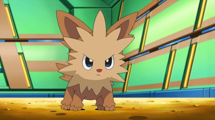 You can find Lillipup as a Shiny in Pokémon GO.
