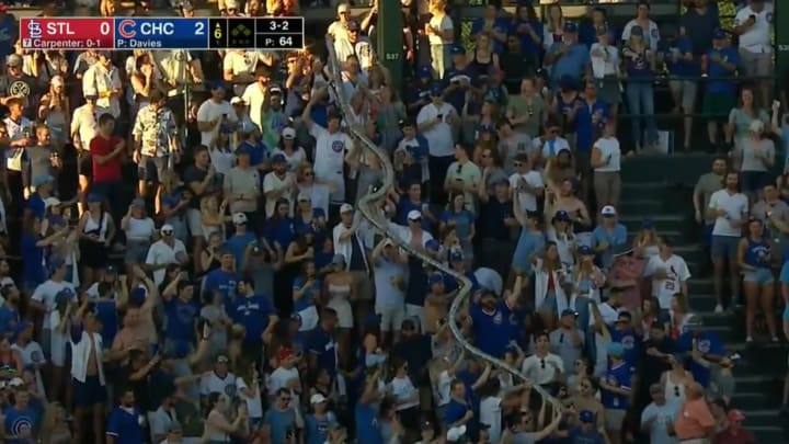 """Cubs fans create an enormous """"beer snake"""" with plastic cups"""
