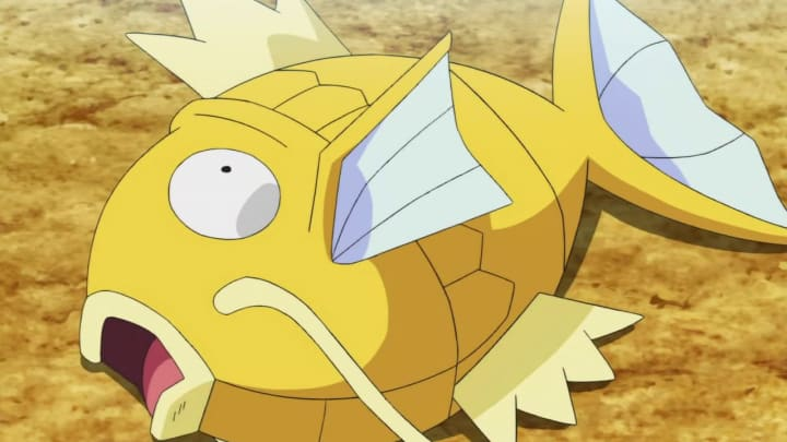 Shiny Magikarp can be found in Pokémon GO right now, but you should wait for Community Day.