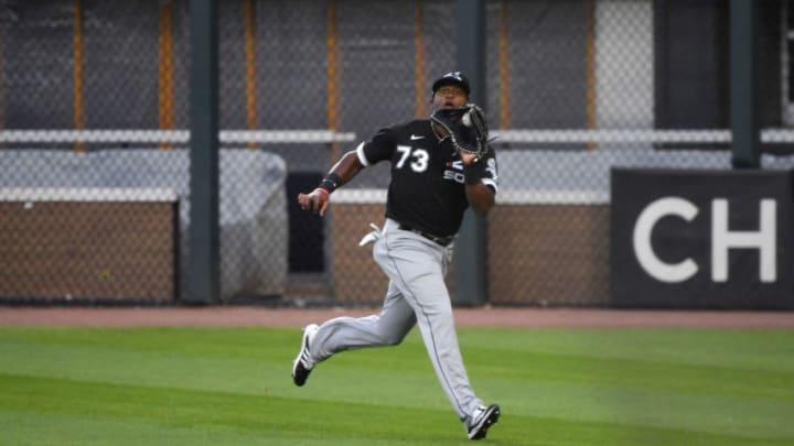 SF Giants promoted recently acquired outfielder Luis Alexander Basabe. (Photo by Quinn Harris/Getty Images)