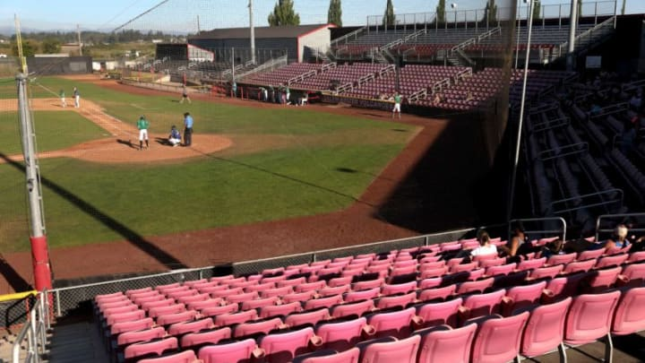 Family and friends watch as the Titans and Seeds play at Volcanoes Stadium in Keizer, Oregon, on Wednesday, July 22, 2020. The Titans rented the stadium out on Airbnb. Volcanoes Stadium Available To Rent On Airbnb