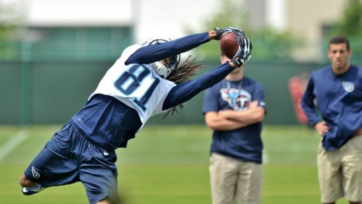 May 15, 2015; Nashville, TN, USA; Tennessee Titans wide receiver Rico Richardson (81) catches a pass during minicamp at Saint Thomas Sports Park. Mandatory Credit: Jim Brown-USA TODAY Sports