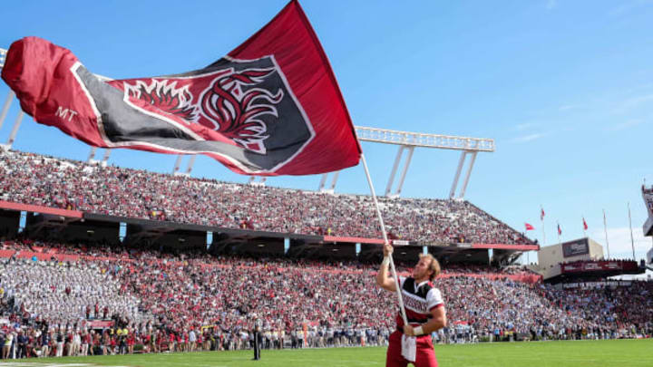 Nov 21, 2015; Columbia, SC, USA; South Carolina Gamecocks cheerleader waves the flag during the game between the Bulldogs and the Gamecocks at Williams-Brice Stadium. Citadel upsets South Carolina 23-22. Mandatory Credit: Jim Dedmon-USA TODAY Sports