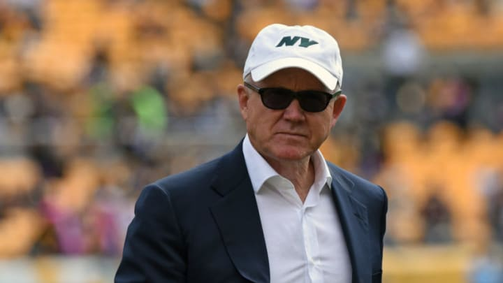 NY Jets, Woody Johnson (Photo by George Gojkovich/Getty Images)