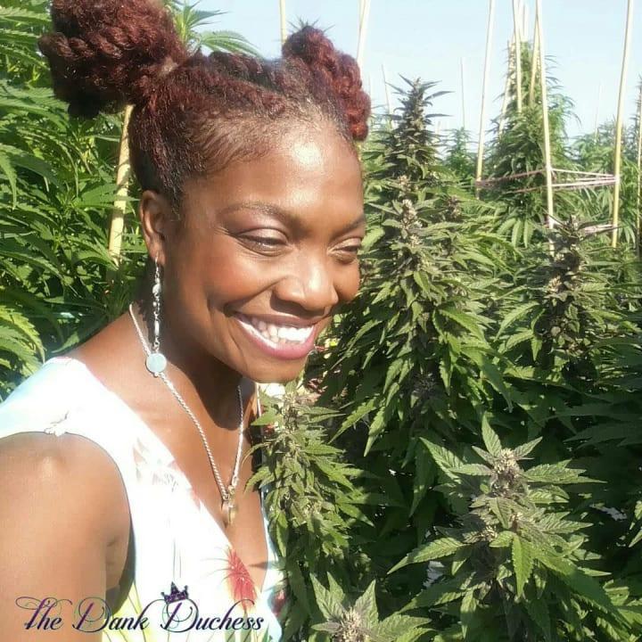 The Dank Duchess in a cannabis field