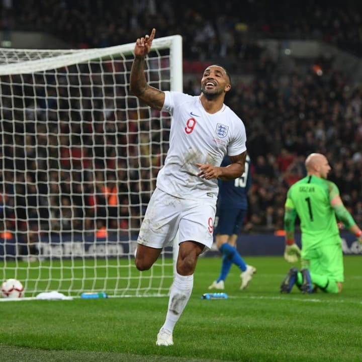 Callum Wilson is expected to be out for the rest of the season