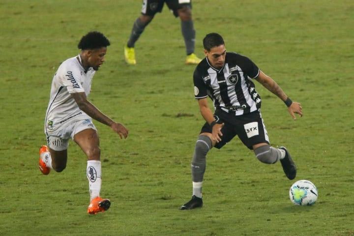 Marinho Hugo Botafogo Santos