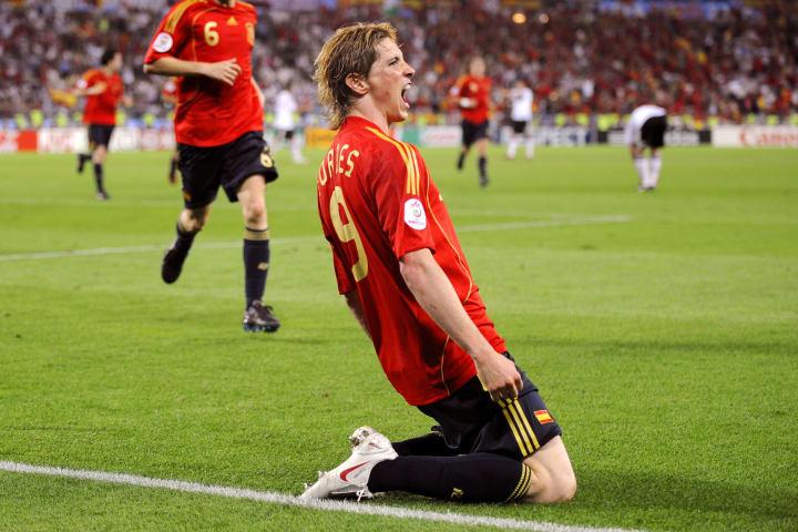 Fernando Torres celebrates scoring for Spain against Germany