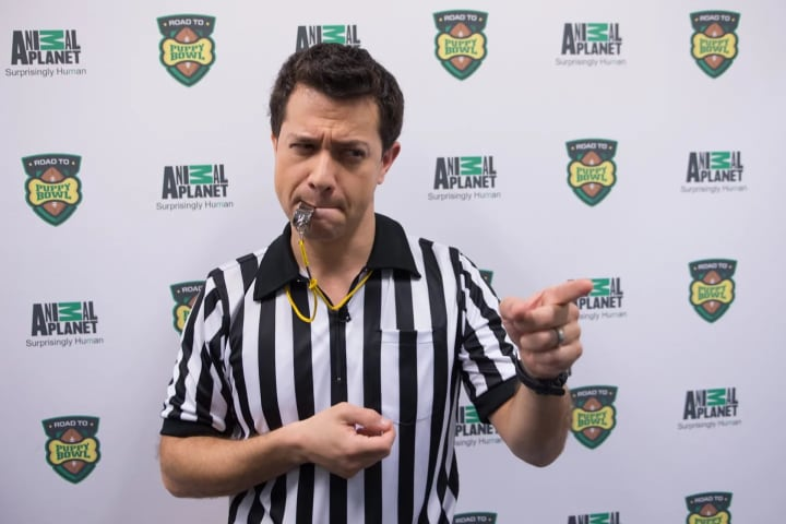 """The puppies are flagged for unnecessary roughness by """"Rufferee"""" Dan Schachner."""
