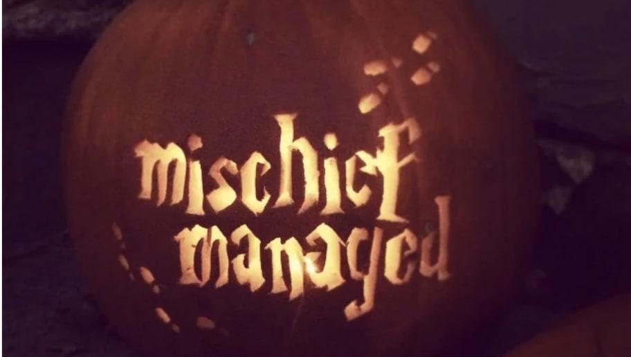 10 cutest harry potter pumpkin carving ideas floor8 10 cutest harry potter pumpkin carving