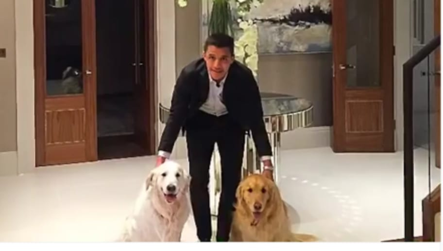 Video Dog Lover Alexis Sanchez Posts Weird Instagram Video With His