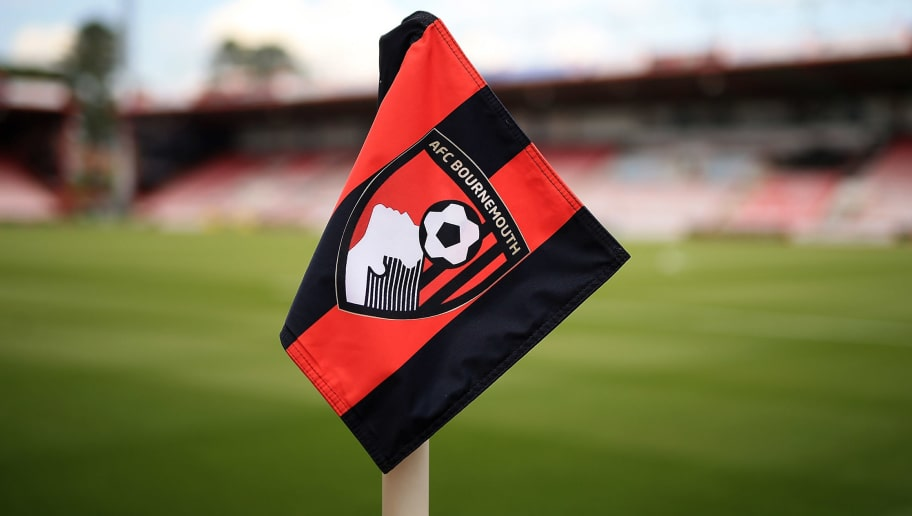 BOURNEMOUTH, ENGLAND - MAY 07:  A general view of the stadium ahead of the Barclays Premier League match between A.F.C. Bournemouth and West Bromwich Albion at the Vitality Stadium on May 7, 2016 in Bournemouth, United Kingdom.  (Photo by Ben Hoskins/Getty Images)