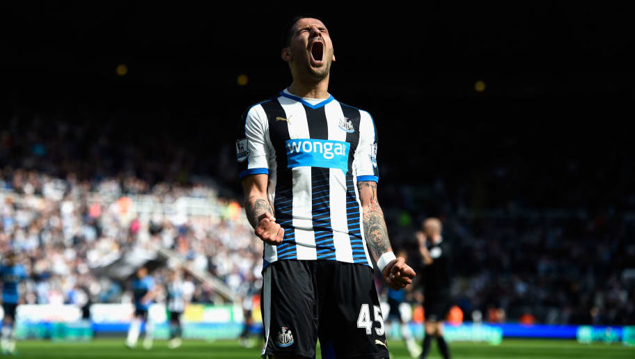 NEWCASTLE UPON TYNE, ENGLAND - MAY 15:  Aleksandar Mitrovic celebrates after scoring the second goal during the Premier League match between Newcastle United and Tottenham Hotspur at St James' Park on May 15, 2016 in Newcastle upon Tyne, England.  (Photo by Stu Forster/Getty Images)