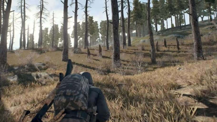 Asus Motherboard Allows PUBG Players to Cheat With Sonic