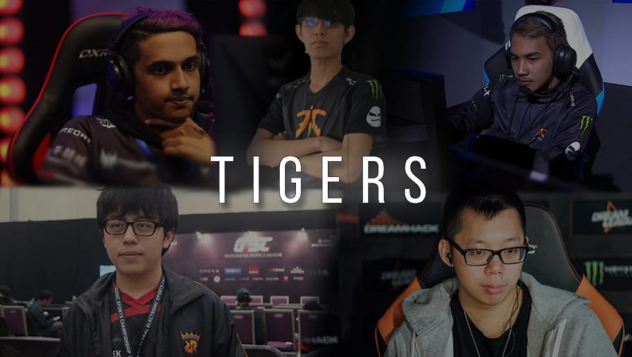 Image result for tigers dota
