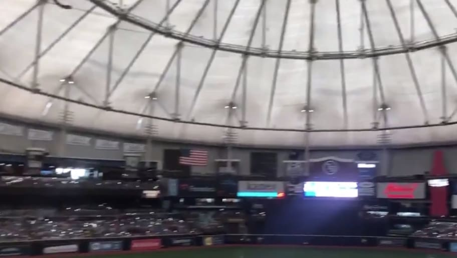 VIDEO: Fans Absurdly Try to Light Up Tropicana Field With Phones