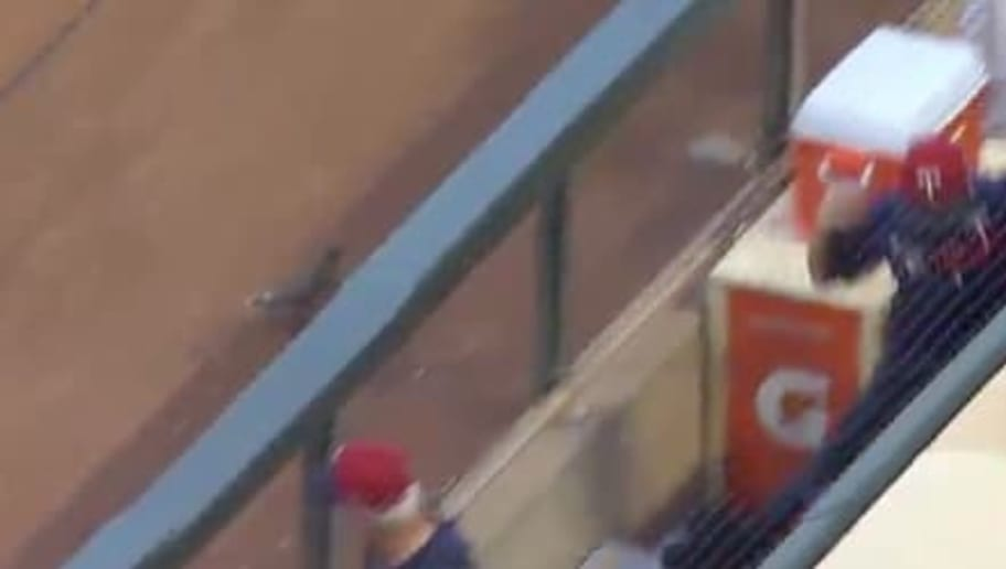 VIDEO: Hostile Target Field Squirrel Takes on Entire Twins Dugout and Players Looked Terrified