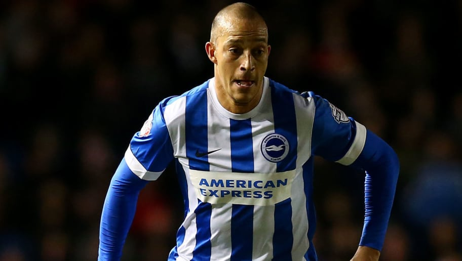 BRIGHTON, ENGLAND - DECEMBER 05: Bobby Zamora of Brighton during the Sky Bet Championship match between Brighton and Hove Albion and Charlton Athletic at The Amex Stadium on December 05, 2015 in Brighton, England. (Photo by Charlie Crowhurst/Getty Images)