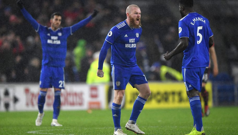 CARDIFF, WALES - DECEMBER 08:  Cardiff player Aron Gunnarsson celebrates on the final whistle during the Premier League match between Cardiff City and Southampton FC at Cardiff City Stadium on December 8, 2018 in Cardiff, United Kingdom.  (Photo by Stu Forster/Getty Images)
