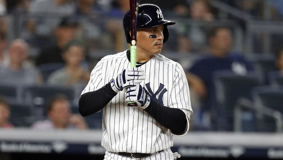 NEW YORK, NY - AUGUST 29: Ronald Torreyes #74 of the New York Yankees at bat against the White Sox at Yankee Stadium on August 29, 2018 in the Bronx borough of New York City. (Photo by Adam Hunger/Getty Images)