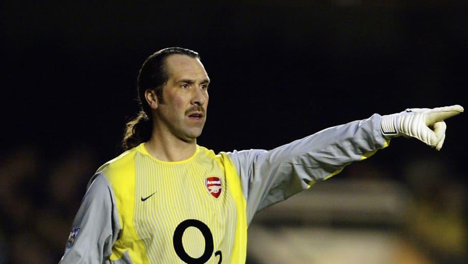 David Seaman of Arsenal