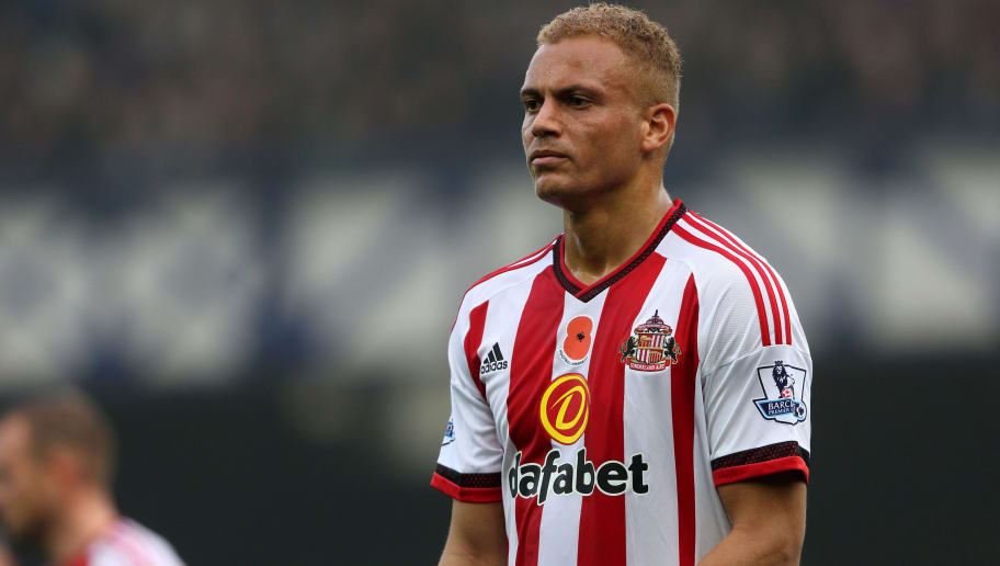 LIVERPOOL, ENGLAND - NOVEMBER 01:  Wes Brown of Sunderland during the Barclays Premier League match between Everton and Sunderland at Goodison Park on November 1, 2015 in Liverpool, England.  (Photo by Matthew Ashton - AMA/Getty Images)