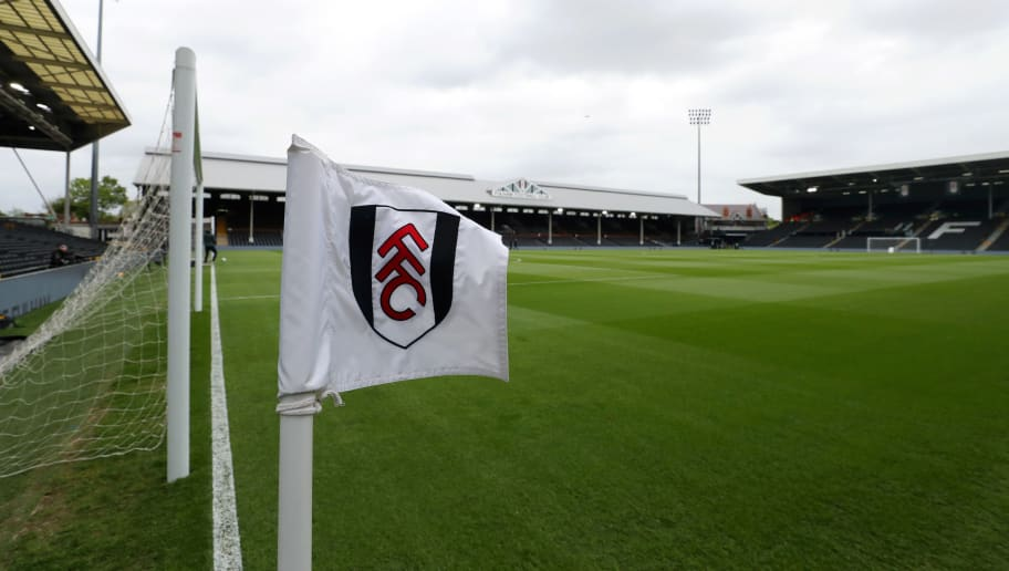 Fulham FC v Cardiff City - Premier League