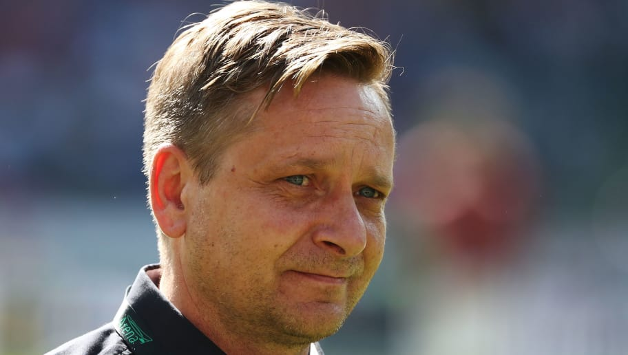 HANOVER, GERMANY - APRIL 21:  Manager Horst Heldt of Hannover looks on prior to the Bundesliga match between Hannover 96 and FC Bayern Muenchen at HDI-Arena on April 21, 2018 in Hanover, Germany.  (Photo by Oliver Hardt/Bongarts/Getty Images)