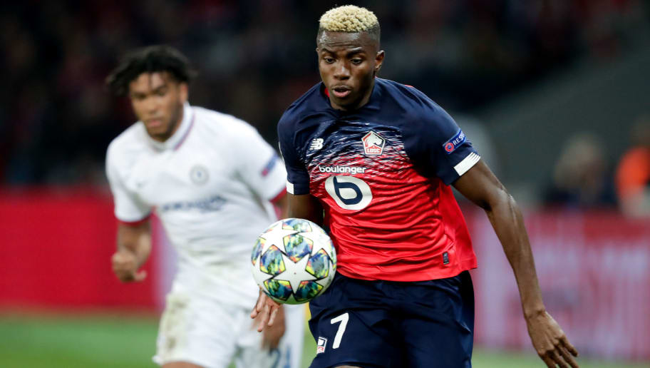 Newcastle Scouting Lille Star Victor Osimhen as Club Plots 'Major Rebuild'