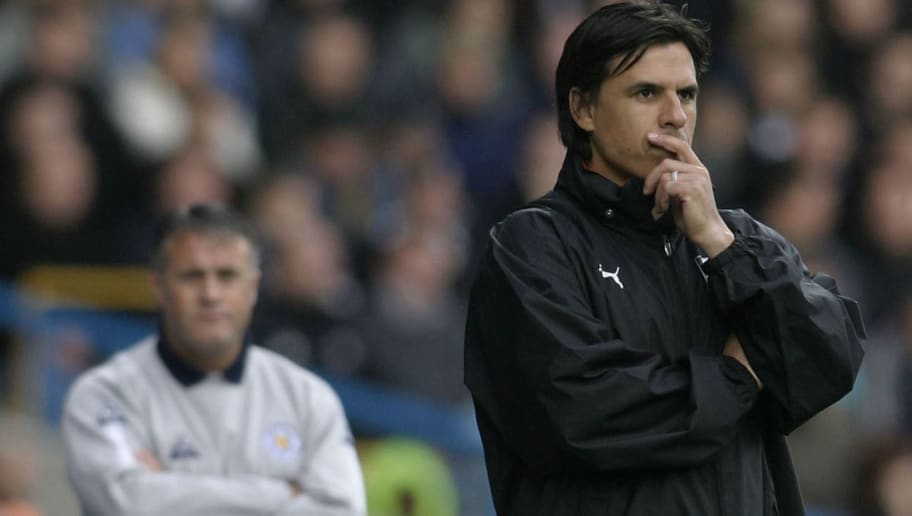 Manager Chris Coleman of Fulham