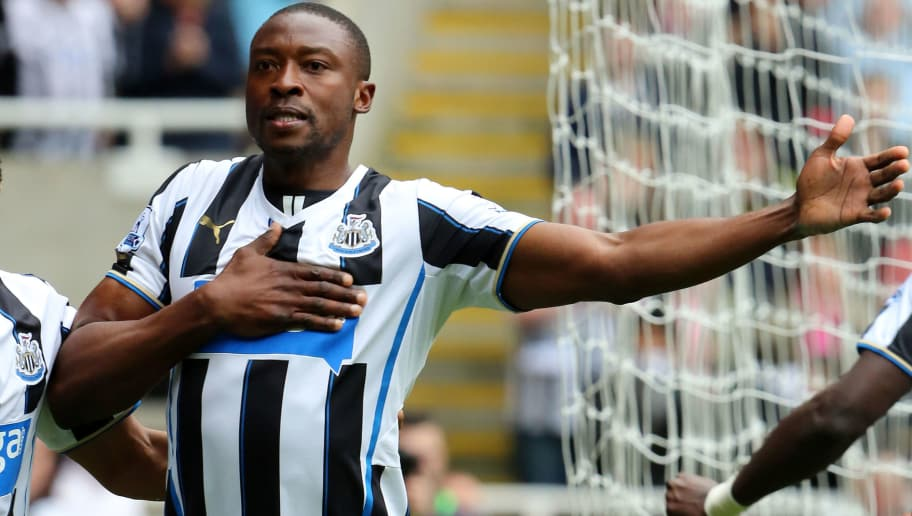 NEWCASTLE, UNITED KINGDOM - MAY 03: Shola Ameobi of Newcastle United celebrates scoring the opening goal during the Barclays Premeir League match between Newcastle United and Cardiff City at St James' Park on May 03, 2014 in Newcastle upon Tyne, England. (Photo by Ian Horrocks/Getty Images)