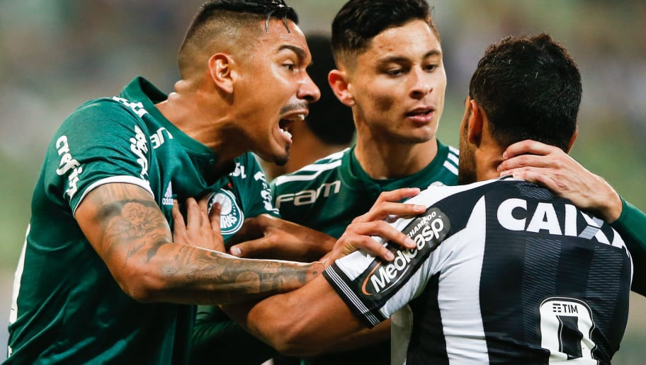 Resultado de imagem para Palmeiras tenta retomar o rumo em jogo contra o Botafogo