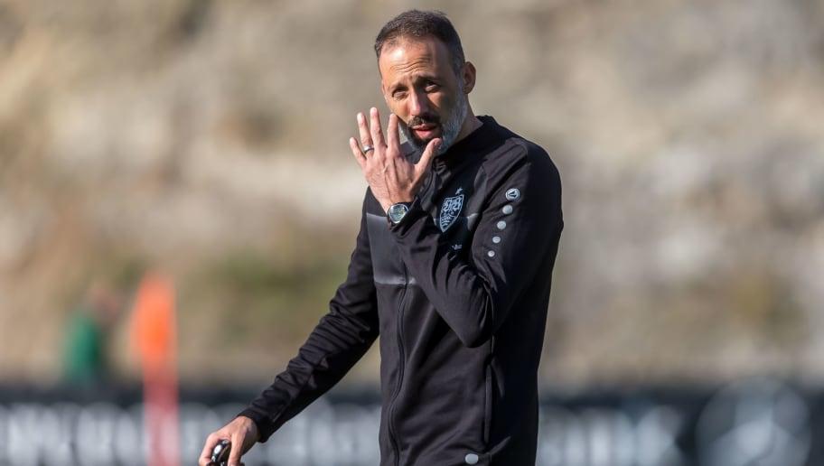 VfB gelingt Generalprobe gegen Dresden - Matarazzo klärt Torwart-Frage