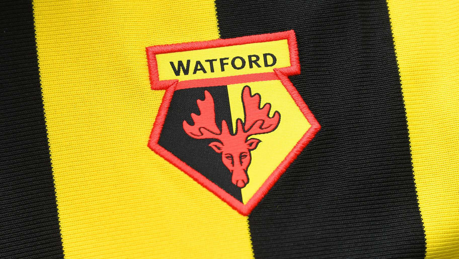Watford to Add Bitcoin Branding on Sleeves as Part of Existing Sponsorship Deal