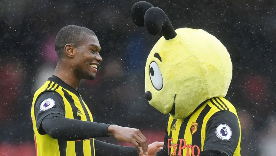 WATFORD, ENGLAND - AUGUST 26:  Christian Kabasele of Watford celebrates victory with mascot Harry the Hornet following the Premier League match between Watford FC and Crystal Palace at Vicarage Road on August 26, 2018 in Watford, United Kingdom.  (Photo by Michael Regan/Getty Images)