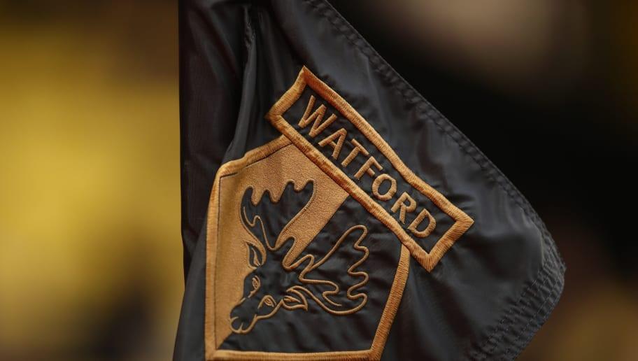 Watford FC v Southampton FC - Premier League