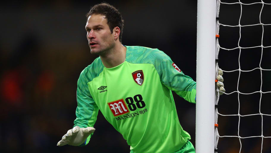 Image result for begovic