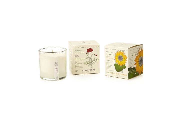 A candle next to two boxes of plantable packaging