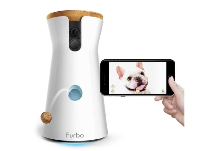 A Furbo dog camera throwing a treat.