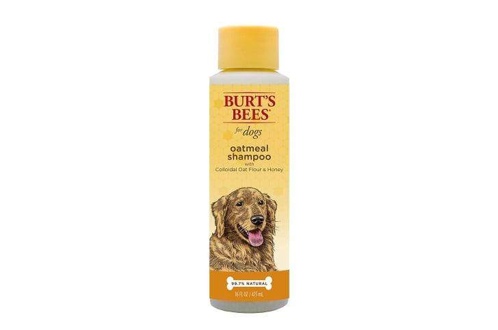 A bottle of Burt's Bees dog shampoo