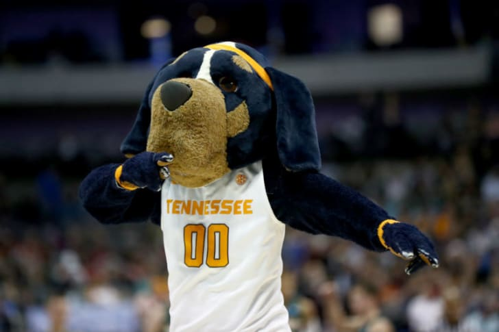 Smokey appears during a Tennessee Volunteers game