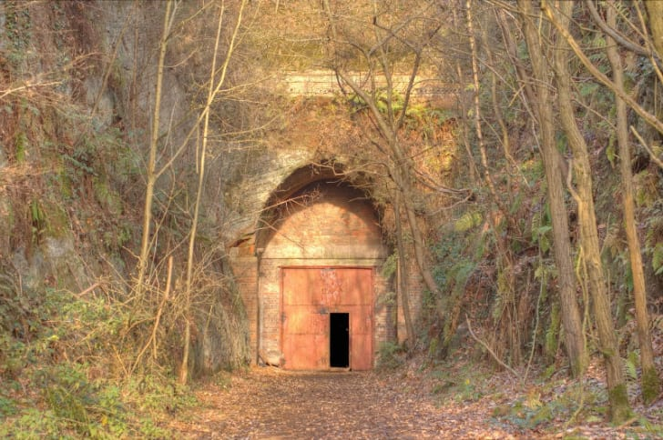 An entrance to the Drakelow Tunnels is surrounded by trees