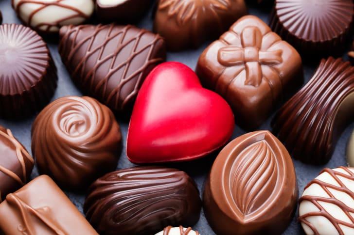 assorted molded chocolates