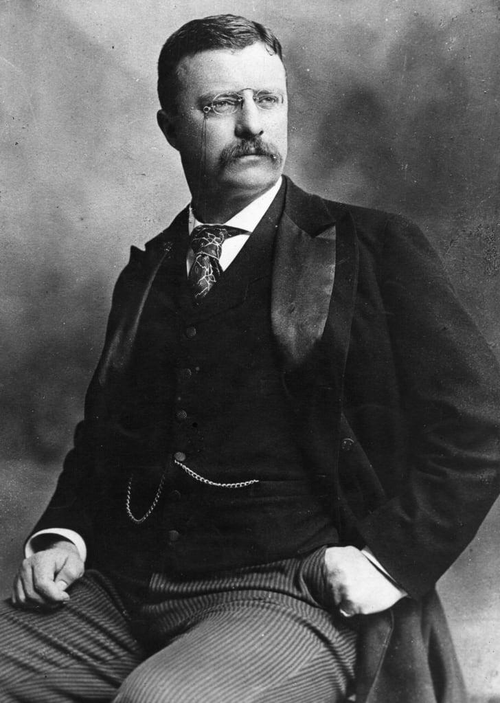 Portrait of Theodore Roosevelt