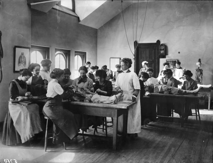 Female medical students perform a dissection