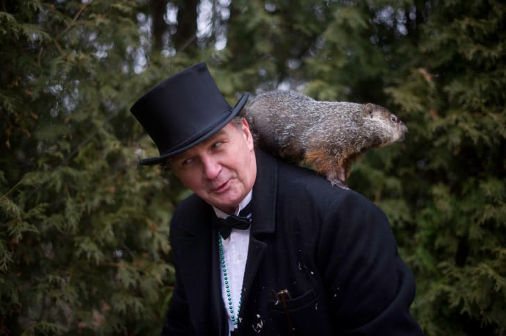 Groundhog handler John Griffiths holds Punxsutawney Phil in 2012.