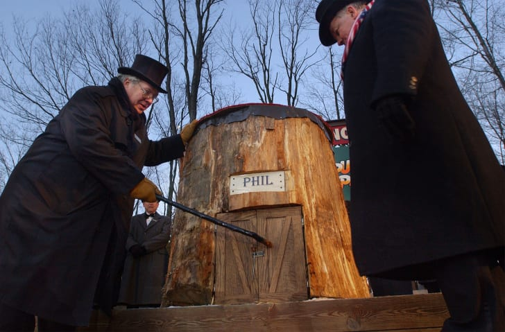 Members of Punxsutawney's 'Inner Circle' tap on Punxsutawney Phil's door as they entice him out February 2.