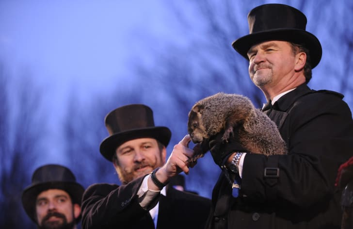 Punxsutawney Phil with his groundhog inner circle.