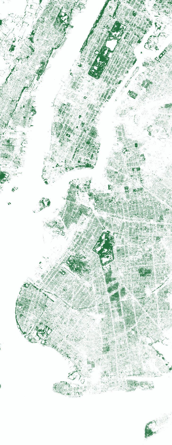 Map of New York City's Trees.