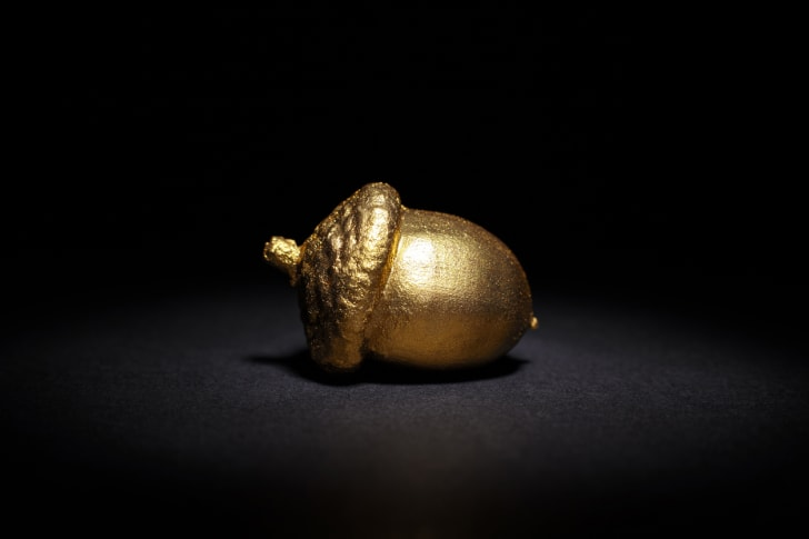 Golden acorn on a black background